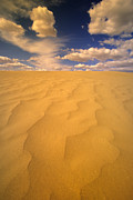 Sand Dunes Prints - Sand Hills Print by Bob Christopher