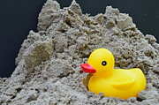 Close Ups - Sand Pile And Ducky by Randy J Heath
