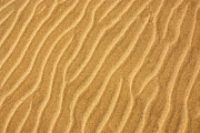 Sand Framed Prints - Sand ripples abstract Framed Print by Elena Elisseeva
