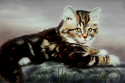 Cute Kitten Pastels Posters - Sandi the kitten Poster by Reb Benno