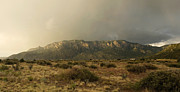 Monsoon Posters - Sandia Mountains in Evening Storm Poster by Matt Tilghman
