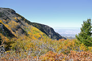 Sandia Mountains Photos - Sandia Peak Autumn Color by Andrea Hazel Ihlefeld