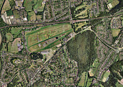 Bird Tracks Photos - Sandown Park Racecourse, Surrey, Uk by Getmapping Plc