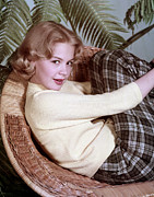 Wicker Chair Prints - Sandra Dee, C. 1959 Print by Everett