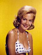 Publicity Shot Photos - Sandra Dee, C. Early 1960s by Everett