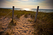 Beach Photo Posters - Sandswept Poster by Jason Naudi Photography