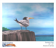 Tern Originals - Sandwich Tern by Kenneth Santos