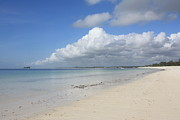 Mombasa Framed Prints - Sandy Beach, Watamu Framed Print by Vladimir Nardin