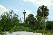 Sanibel Posters - Sanibel Island Lighthouse Poster by Monica Lewis