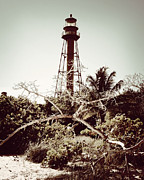 Florida Flowers Framed Prints - Sanibel Lighthouse-Sepia Play Framed Print by Chris Andruskiewicz