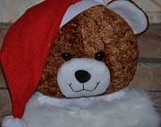 Button Nose Prints - Santa Bear Print by Maria Urso