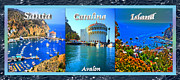 Catalina Prints - Santa Catalina Island Triptych Print by Cheryl Young