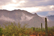 Donna Van Vlack Photos - Santa Catalina Mountains II by Donna Van Vlack