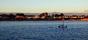 Santa Cruz Sailboat Art - Santa Cruz boardwalk  by Garnett  Jaeger