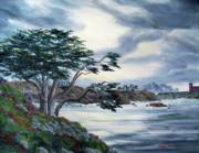 Laura Iverson - Santa Cruz Cypress Tree
