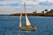Santa Cruz Sailboat Art - Santa Cruz Mark Abbott Memorial Lighthouse CA  by Christine Till