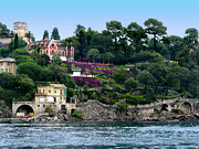 Fushia Framed Prints - Santa Margherita Ligure.Italy Framed Print by Jennie Breeze