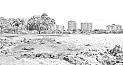 Sarasota Framed Prints - Sarasota Sketch Framed Print by Betsy A Cutler East Coast Barrier Islands