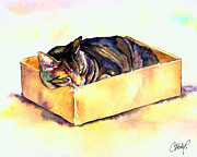 Cat Art Art - Sassy Sleeping by Christy  Freeman
