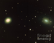 Andromeda Galaxy Posters - Satellites Of Andromeda Galaxy Poster by Science Source