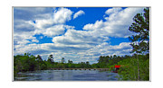River Flooding Framed Prints - Satilla River Framed Print by Diana  Tyson