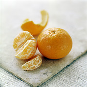 Vitamine Photos - Satsuma by David Munns