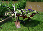 Shovel Originals - Saturday Morning Planting  by Paul Cannon