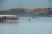 Sausalito Digital Art Framed Prints - Sausalito Harbour Framed Print by Carol Ailles