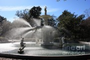 Forsythe Fountain Savannah Framed Prints - Savannah Fountain Framed Print by Carol Groenen