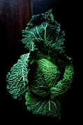 Healthy Eating Art - Savoy Cabbage by Ingwervanille