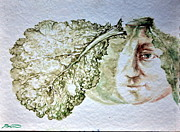 John Biro Framed Prints - Savoy Cabbage Framed Print by John Biro