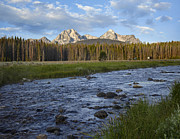 Idaho Scenery Posters - Sawtooth Range And Stanley Lake Creek Poster by Tim Fitzharris