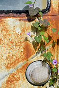 Rusted Cars Framed Prints - Say Goodbye Framed Print by Carolyn Marshall