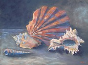 Sea Shells Pastels - Scallop Sea Shell by Marlene Kingman