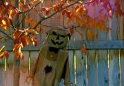 Jack-o-lanterns Photos - Scarecrow 2 by Steve Ohlsen