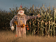 Thanksgiving Art Photos - Scarecrow in a Corn Field by Oleksiy Maksymenko