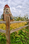 Scarecrow Prints - Scarecrow in Corn and Squash Patch Print by Gary Whitton
