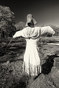 Historic Site Prints - Scarecrow in the Garden Print by George Oze
