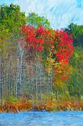 Digital Photography - Scarlet Autumn Burst by David Lane