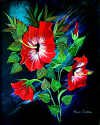 Fram Cama - Scarlet Hibiscus