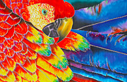 Flying Bird Tapestries - Textiles Acrylic Prints - Scarlet Macaw Acrylic Print by Daniel Jean-Baptiste