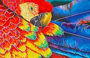 Scarlet Macaw Print by Daniel Jean-Baptiste