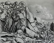 Wyoming Drawings - Scene in the Cedar Breaks by Dawn Senior-Trask