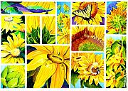Sunflowers Paintings - Scenes of Sunflowers by Janis Grau