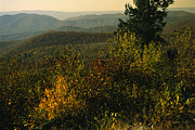 Scenic Drive Prints - Scenic Overlook At Tanners Ridge Print by Raymond Gehman