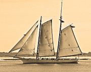 Sailing Digital Digital Art Framed Prints - Scenic Schooner - Sepia Framed Print by Al Powell Photography USA