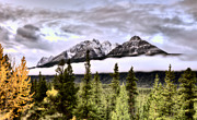Park Scene Digital Art - Scenic View Rocky mountains by Mark Duffy