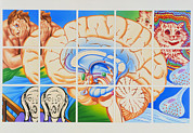 Mental Condition Prints - Schizophrenia: Artwork Of Brain And Paintings Print by John Bavosi