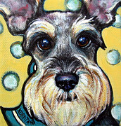 Miniature Schnauzer Paintings - Schnauzer with Polkadots by Rebecca Korpita