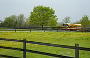 Rural School Bus Photos - School Bus In A Field In Rural Ontario by Marlene Ford